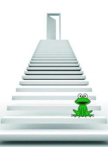 escalier-grenouille